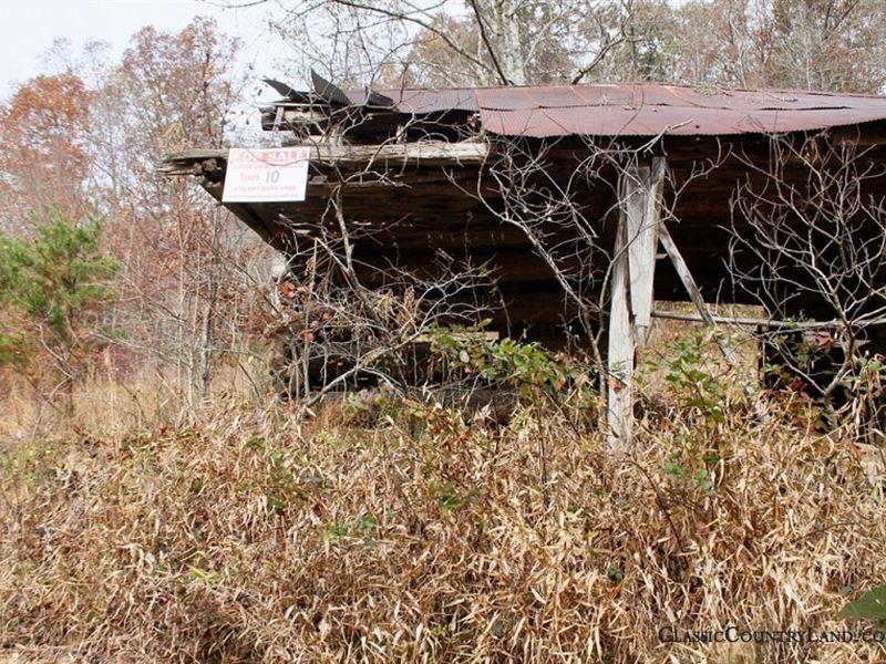 Autumn Ridge, Leslie County : Confluence : Leslie County : Kentucky