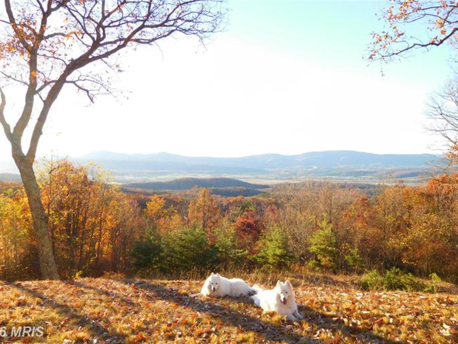 Panoramic Views : Farm for Sale : Moorefield : Hardy County : West ...
