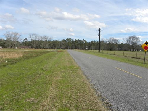24-039 Chapel Hill Road East Tract : Ashville : Crenshaw County : Alabama