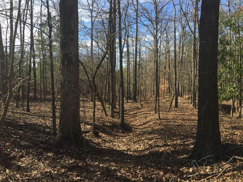 Foreclosure Hunting/Timber Tract : Washington : Wilkes County : Georgia