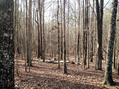 Reduced Stone Road - 14.93 Acres : McDonough : Henry County : Georgia