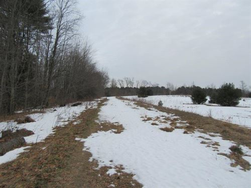 37 Acres Syracuse Ny Oneida Lake : Palermo : Oswego County : New York