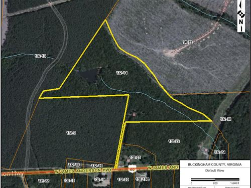 27 Acre Hunting/Investment Property : Gladstone : Buckingham County : Virginia