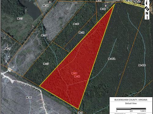 39 Acre Hunting/Timber Property : Dillwyn : Buckingham County : Virginia