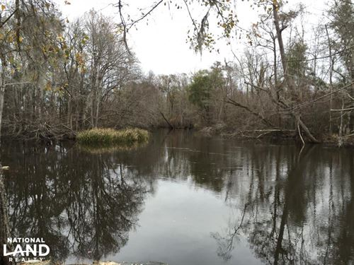 1953 Acres on Lynches River : Johnsonville : Florence County : South Carolina