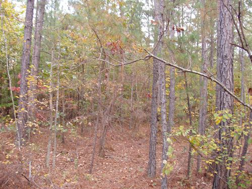 58-001W Wilsonville West Tract : Wilsonville : Shelby County : Alabama