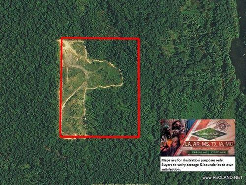 30 Ac - Hunting & Timberland Tr : Hermitage : Bradley County : Arkansas