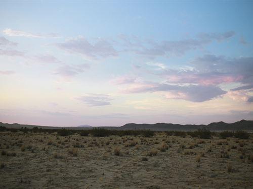 Land Rush In Ca Stake Your Claim : Landers : San Bernardino County : California