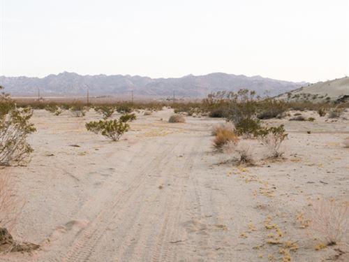You Must See The Beauty Of Desert : Landers : San Bernardino County : California