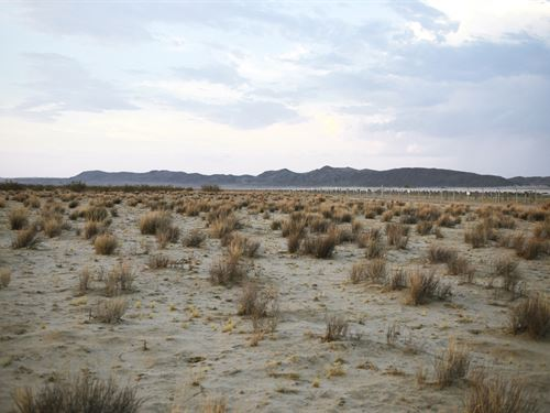 Create Your Dream Today : Landers : San Bernardino County : California