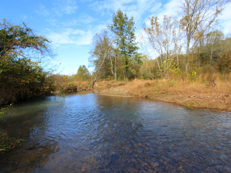 112 Acres On Blue Buck Creek : Duck River : Hickman County : Tennessee