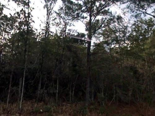Madison County, Florida $165,000 : Greenville : Madison County : Florida