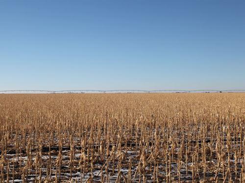 Perkins County Pivot Irrigated Land : Grant : Perkins County : Nebraska
