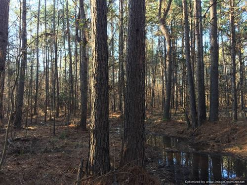21+/- Ac Adjoins National Forest : Roxie : Franklin County : Mississippi