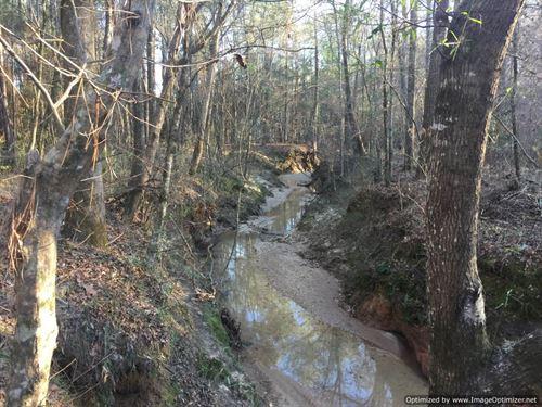 62+/- Ac Adjoins National Forest : Meadville : Franklin County : Mississippi