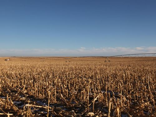 Cheynne County Pivot Irr Auction : Sidney : Cheyenne County : Nebraska