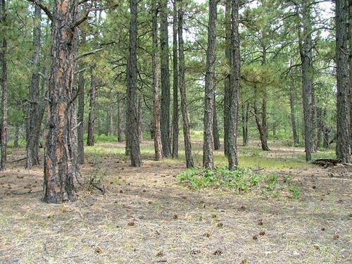 Parcel D90 Santa Fe Trail Ranch : Trinidad : Las Animas County : Colorado