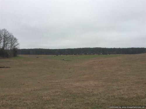 Turn-Key Pastureland : Durant : Holmes County : Mississippi