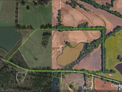 72.9+/- Ac Secluded Property : Canton : Madison County : Mississippi