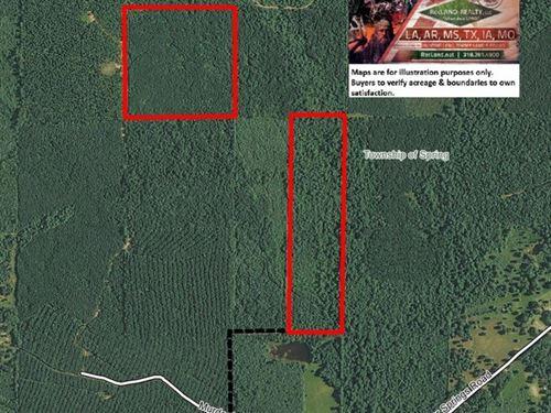 80 Ac - Timberland & Hunting : Pine Bluff : Jefferson County : Arkansas