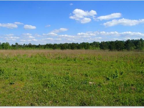 340 Acres In Oktibbeha County : Starkville : Oktibbeha County : Mississippi