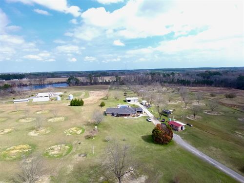 Beautiful Home With Pecan Orchard : Lyons : Toombs County : Georgia