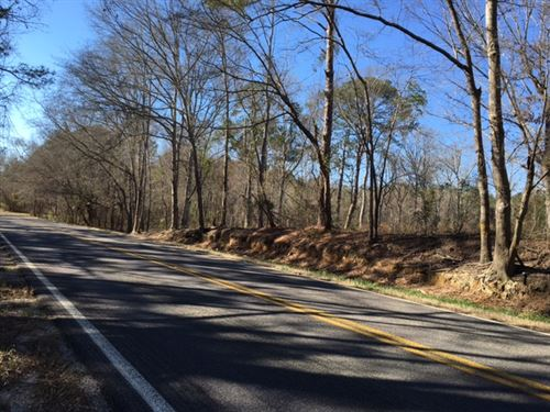 Saco Alabama Tract : Union Springs : Bullock County : Alabama