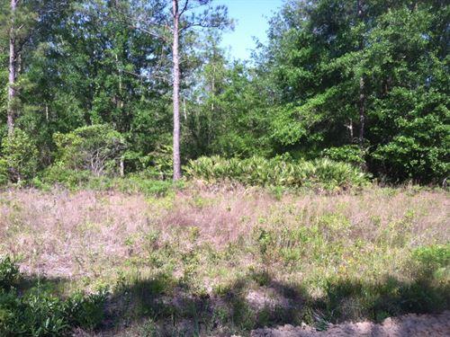 Riverwoods Lot 5 Unit 4 : Cairo : Grady County : Georgia