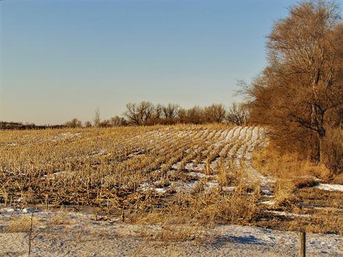 Investment Grade Recreational Farm : Ivanhoe : Lincoln County : Minnesota