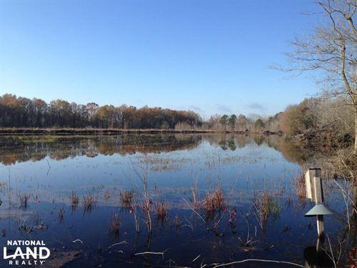 Summerton Duck Pond : Summerton : Clarendon County : South Carolina