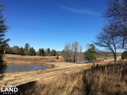 Rolling Open Land With Ponds : Union County : South Carolina