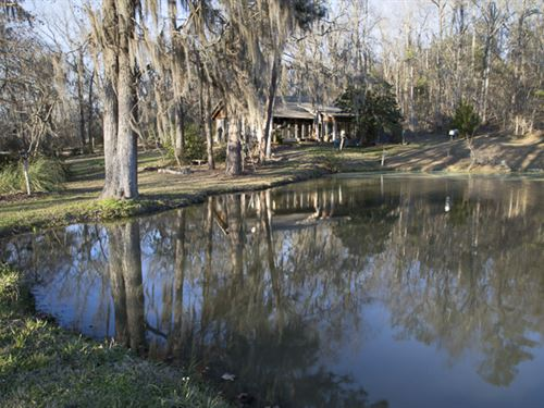 Old Town Creek Blackbelt Farm : Tyler : Lowndes County : Alabama
