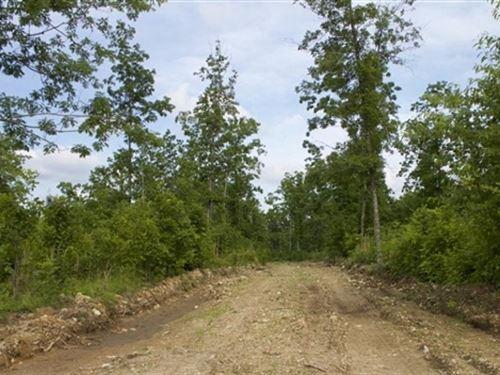 Missouri, Shannon County, 5.3 Acre : Birch Tree : Shannon County : Missouri