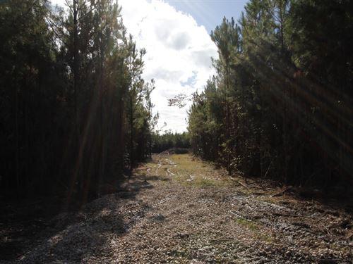 River Bend Lot 4 : Oberlin : Allen Parish : Louisiana