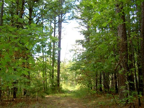 20 Off Grid Acres For Hunting : Winona : Shannon County : Missouri
