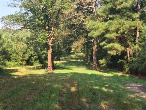 Sawmill Road - 124311 : Dexter : Walthall County : Mississippi