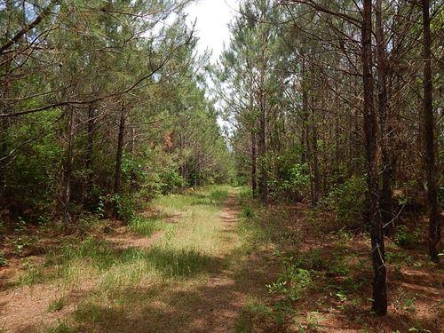 Granger Prentiss Rd 40 -124287 : Prentiss : Jefferson Davis County : Mississippi