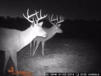 Oak Grove Road 1267 - 124254 : Lucas : Jefferson Davis County : Mississippi