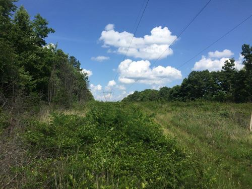 570.39+/- Very Affordable Acreage : Palmer : Grundy County : Tennessee