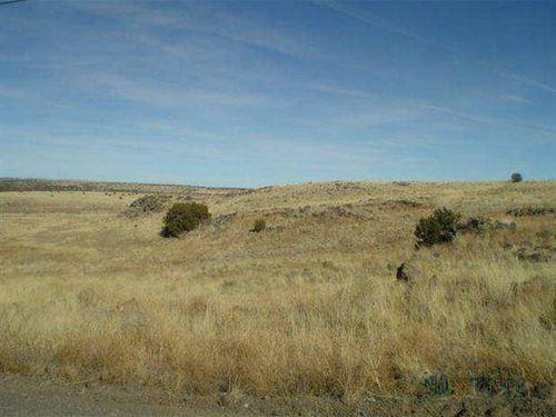 13.33 Acres For Sale : St. Johns : Apache County : Arizona