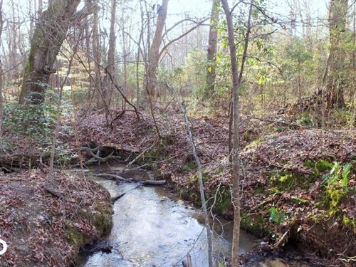 Recreational Homesite With Creek : Fountain Inn : Greenville County : South Carolina