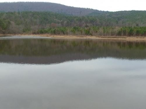 382+/- Acre Ouachita Mountain Pastu : Danville : Yell County : Arkansas