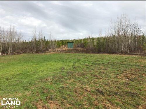Mud Creek Timber Investment & Hunti : Northport : Tuscaloosa County : Alabama