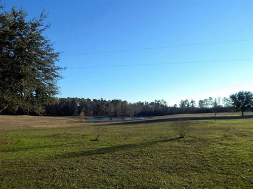 85 Acres W/ Home In Newton County : Newton : Mississippi