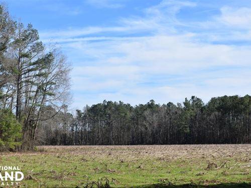 Country Store Road 37 Acres : Saint Stephen : Berkeley County : South Carolina