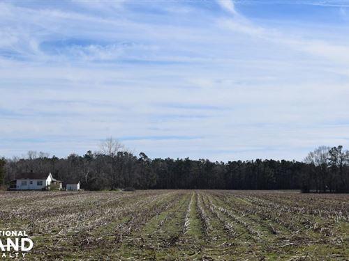 Home Site & Horse Farm : Saint Stephen : Berkeley County : South Carolina