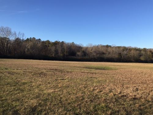 38+/- Acres Pasture Land : Sale Creek : Hamilton County : Tennessee