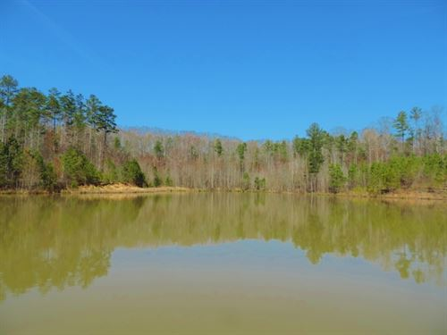 2 Ponds With Timber : Madison : Morgan County : Georgia