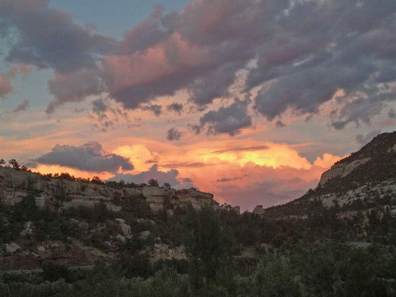 45 Acre Co Organic Farm Canyon Eden : Paradox : Montrose County : Colorado