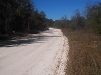 Private And Peaceful Homesite : Ft White : Columbia County : Florida
